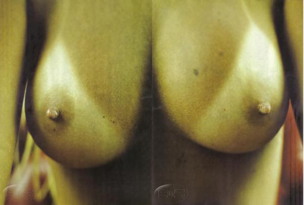 vivi+fernantes+atriz+porno+nua+sexo+2 As brasileiras mais famosas e gostosas já fotografadas nuas