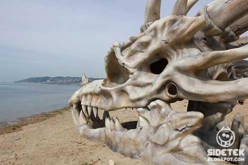 Heboh, Ditemukan Fosil Naga Terdampar Di Pantai Inggris
