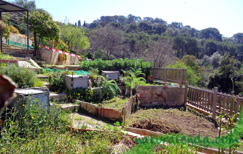 el huerto aun sin plantar