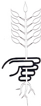 Símbolo de plantar un árbol