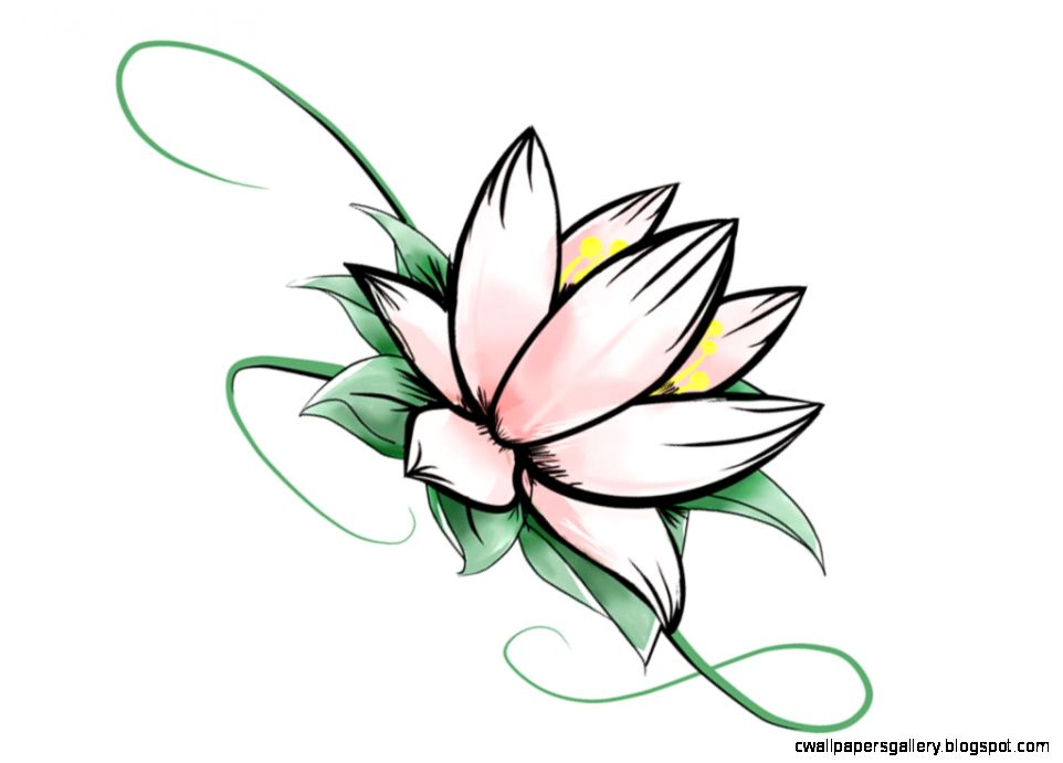 Simple Cool Lotus Flower Tattoo Design  Flower Meanings Pictures