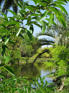 Florida free frugal fairchild tropical botanic garden - Fairchild tropical botanic garden hours ...