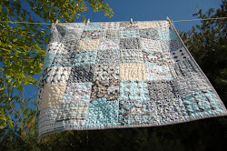 A Quilt for Carter