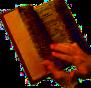 Reflexiones para la vida, aprendidas del reino de Dios en frases