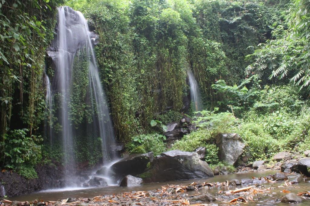 Gunung Pulosari Untuk Pendaki Pemula Di Daerah Banten