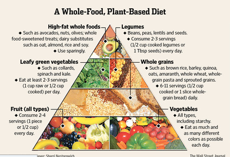 Average weight loss on plant based diet