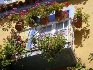 Balcon+con+flores Concurso para decorar balcones   Balkondekorations Wettbewerb Calpe 01.  30.Junio 2012