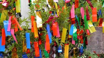 il giappone a treviso: da sabato 3 agosto si festeggia il tanabata e si appendendono i desideri al bambu'