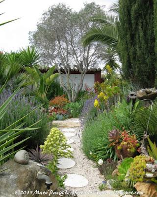 Julio's garden
