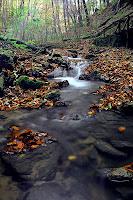 Descenso de un rio