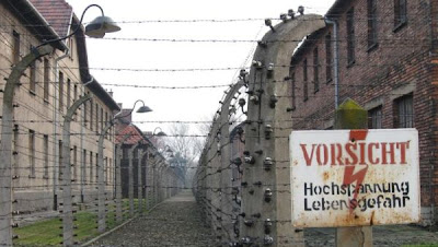 Auschwitz Concentration