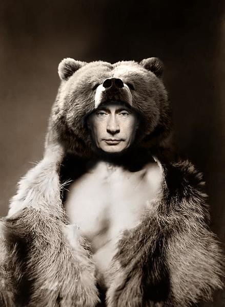 WAKING SLEEPING BEARS   THE PUTIN PRESIDENCY Vladimir Putin Funny Bear