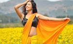 Dhaksha photos from Ak Rao Pk Rao Movie-thumbnail