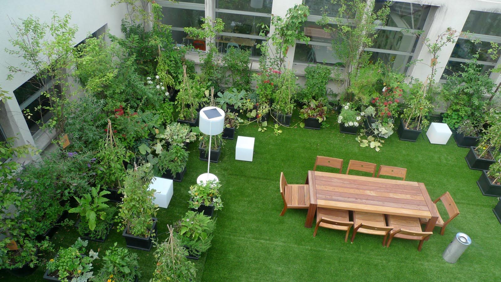 Paradis express paris rooftop garden for Garden designs in india