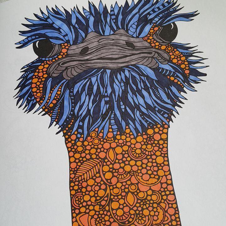Kolorista Ostrich Colouring Book