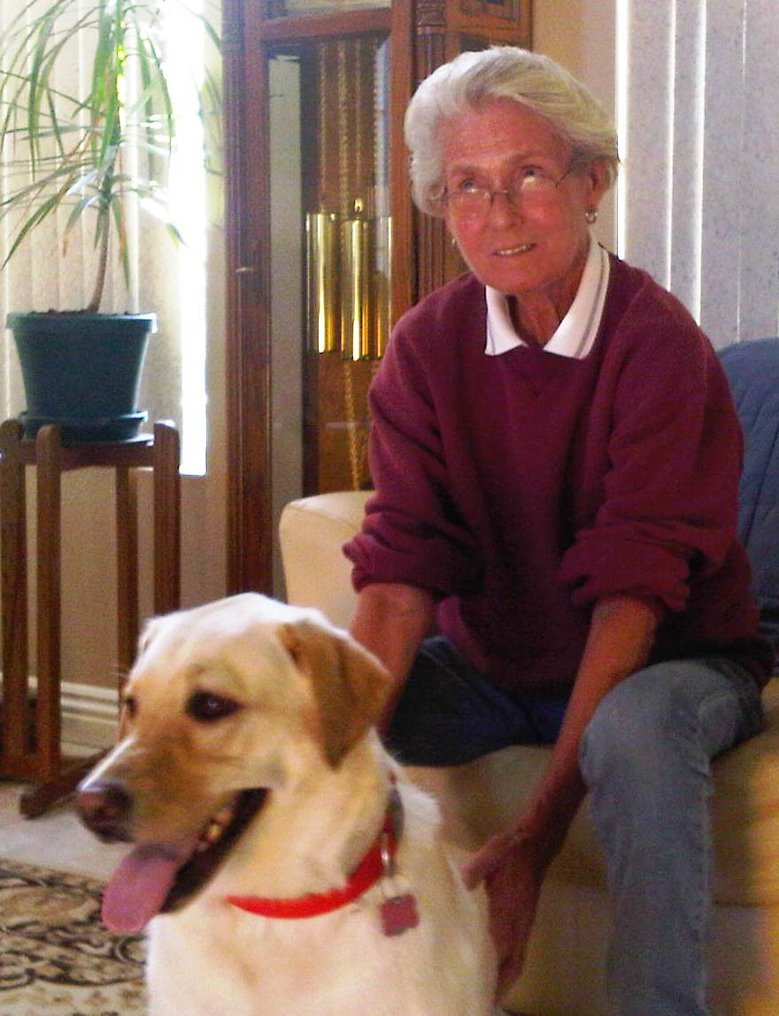 yellow lab next to dog adopter