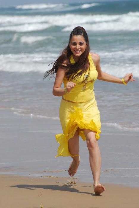 surabhi actress pics