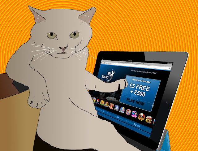cat playing ipad casino