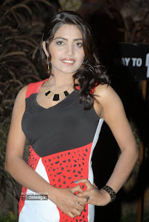 Actress-Vidisha-Stills-at-Manushulatho-Jagratha-Audio-Release