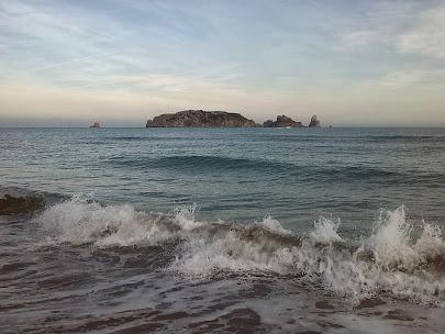 Illes Medes. Gener 2014