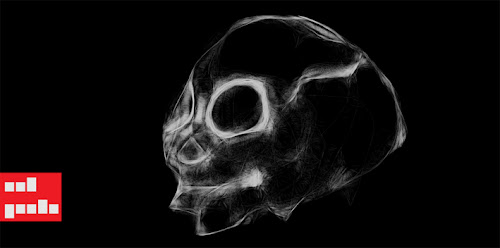 Gallery For > Red Panda Skull Skeleton