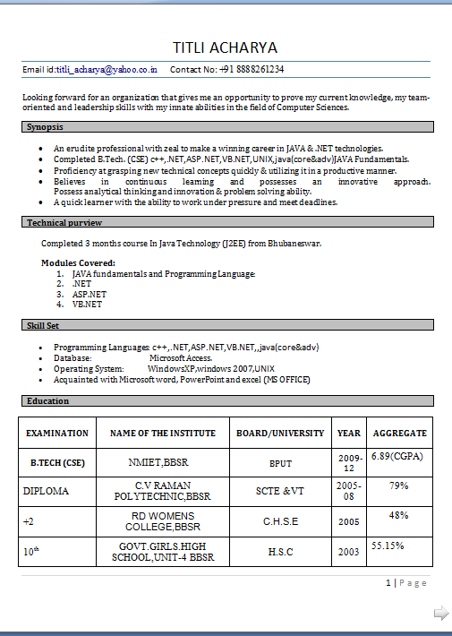 south african cv format