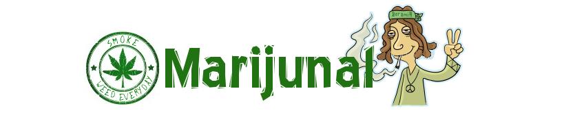 Esrar nasıl yetiştirilir, Marijuana nedir, Cannabis nedir, Sakin ol şampiyon.