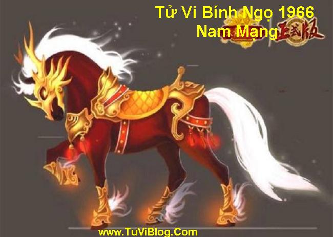 Tu Vi Binh Ngo Nam