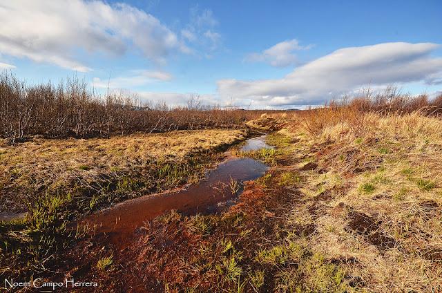 Laponia suecia