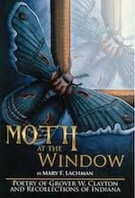 Moth at the Window