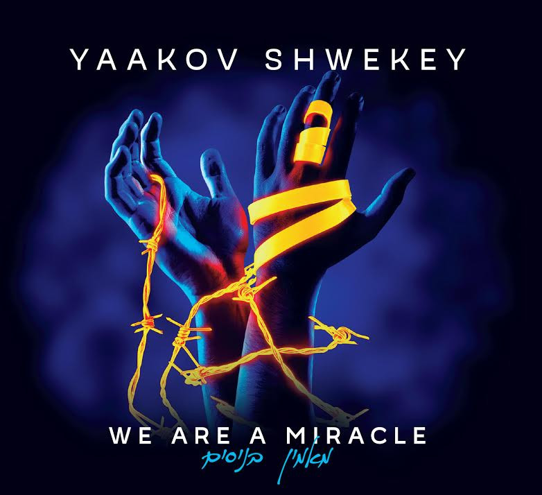 SHWEKEY | We Are A Miracle