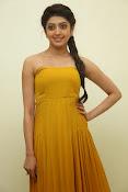 Pranitha latest dazzling pics-thumbnail-4