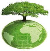 Plantar un árbol...