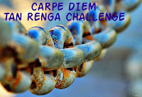 http://chevrefeuillescarpediem.blogspot.in/2015/06/carpe-diem-tan-renga-challenge-91.html