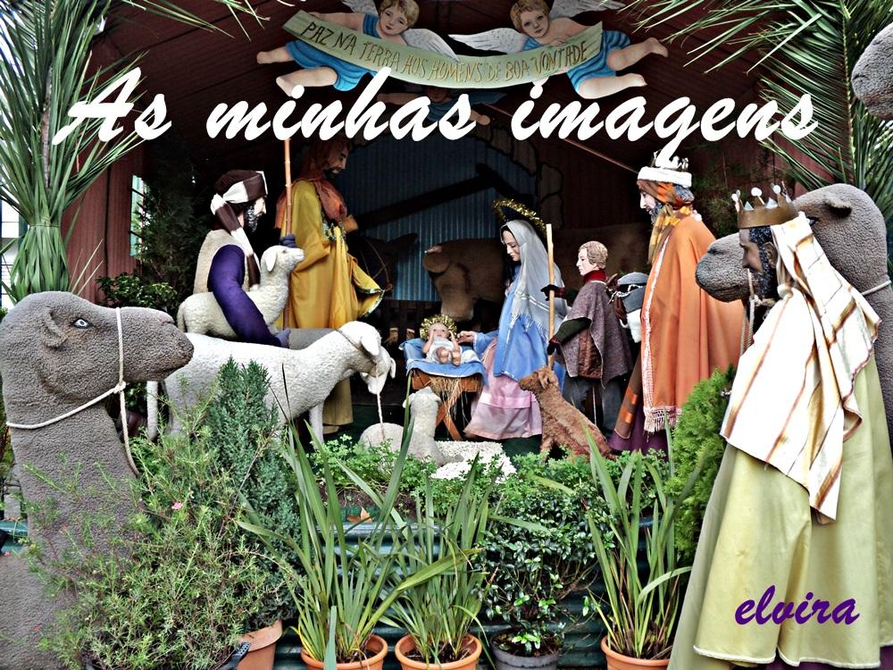 AS MINHAS IMAGENS