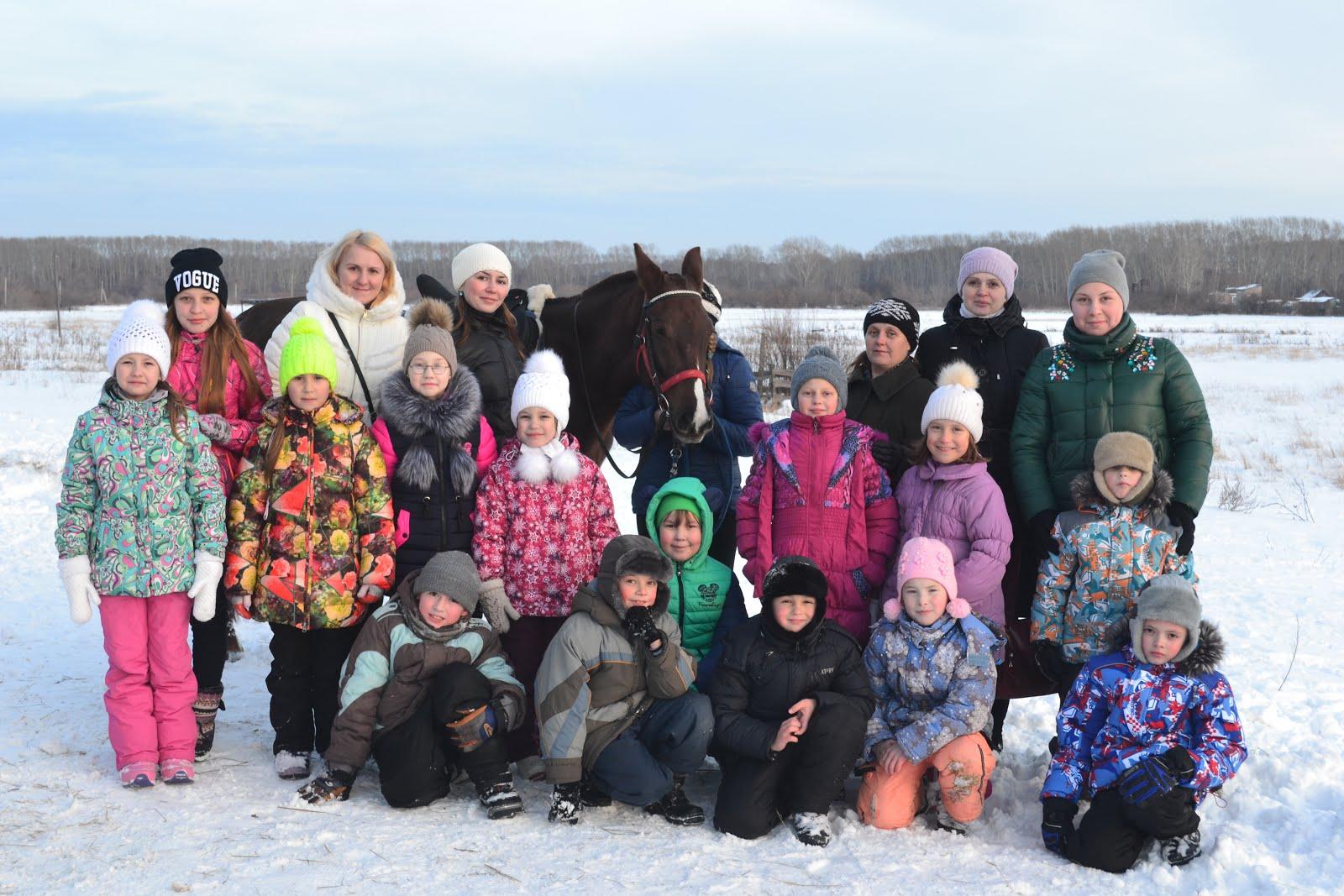 В гостях у лошадей
