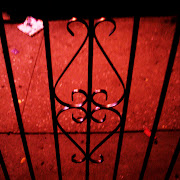 Day 43 ~ Iron Heart. Iron gates. Posted by Miss Phoebe at Sunday, June 12, .