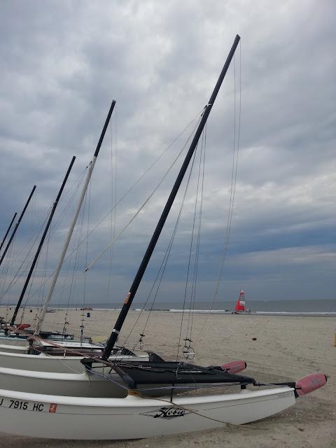 Hobie Kat, sailing