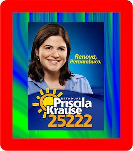 PRISCILA KRAUSE: A DEPUTADA DE GARANHUNS!!!