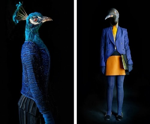 13-Peahen and Penguin-Miguel-Vallinas-Segundas-Pieles-Second-Skins-Smartly-Dressed-Animals-www-designstack-co