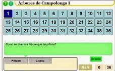 Árbores Campolongo