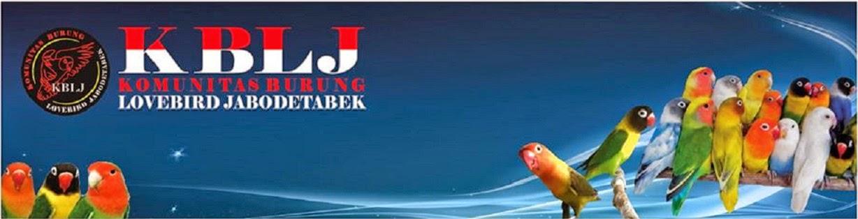 KOMUNITAS BURUNG LOVEBIRD JABODETABEK