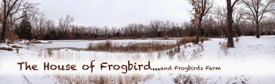The House of Frogbird and Frogbirds Attic