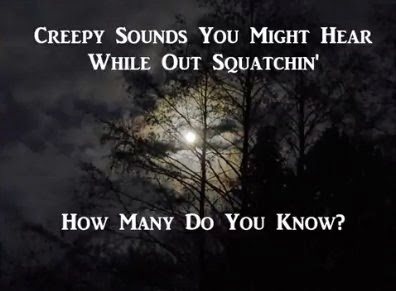 Creepy Animal Sounds Squatchin