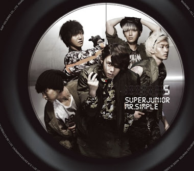 Mr.Simple B version