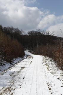 verschneite Forststrasse