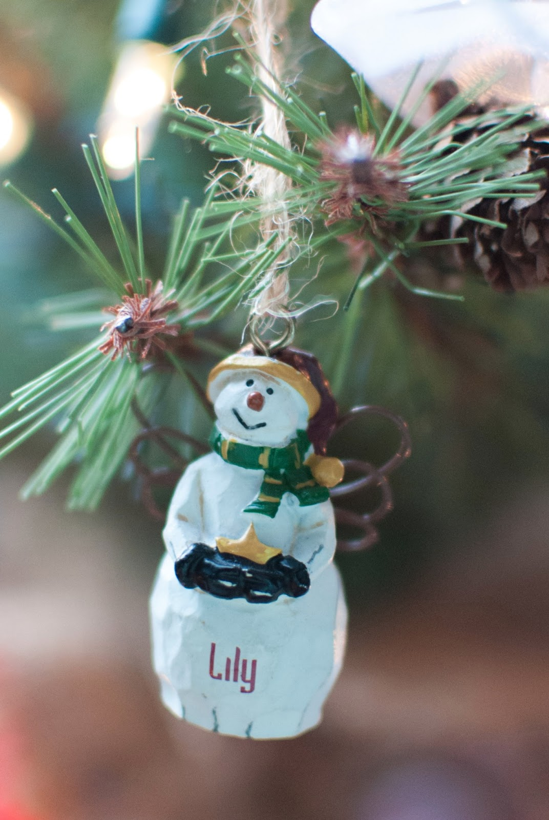 Christmas name ornaments - She Is So Thoughtful And Makes An Ornament Each Christmas In Honor Of Each Baby For Everyone In Group