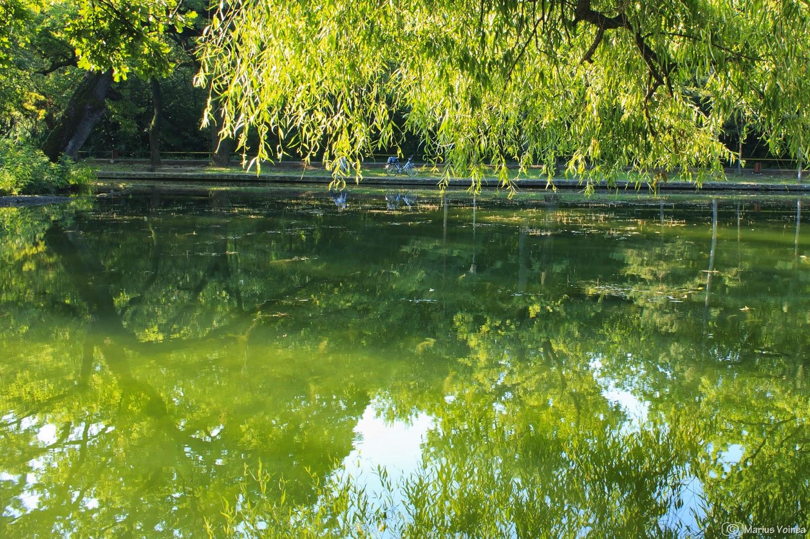 Parcul Crang, Buzau, foto 3