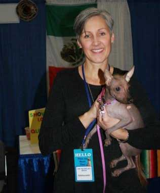Another 10 Rare Dog Breeds in The World Xoloitzcuintli