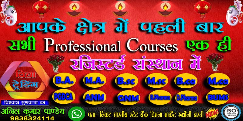 Vidya Information